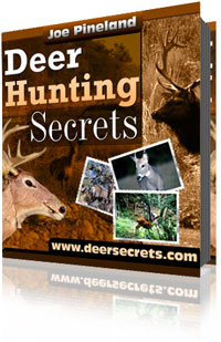 Deer Hunting Secrets - Whitetail Deer Hunting Tactics