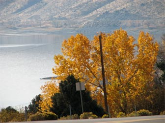 Lake Topaz, NV in the Autumn