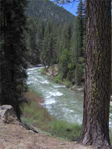 Middle Fork Stanislaus River [click to view wallpaper]