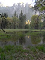 Yosemite National Park Meadow Floods